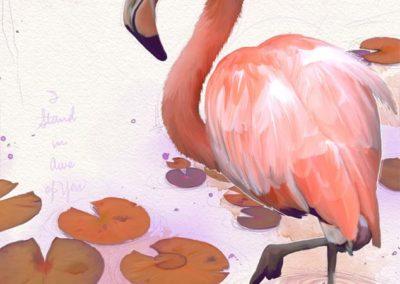 Flamingo Me